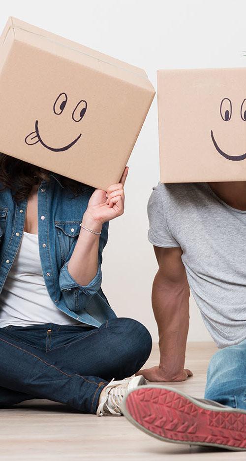 carton commun, petites annonces, cartons, papier, feuilles de papier, matières d'emballage, papier bulle, gratuit, france, aude etienne, déménagement, étudiants